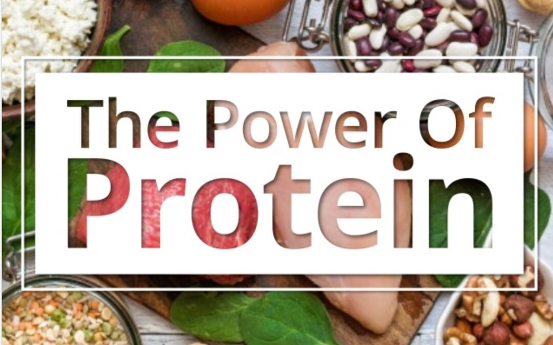 The Power Of Protein- Guest Post